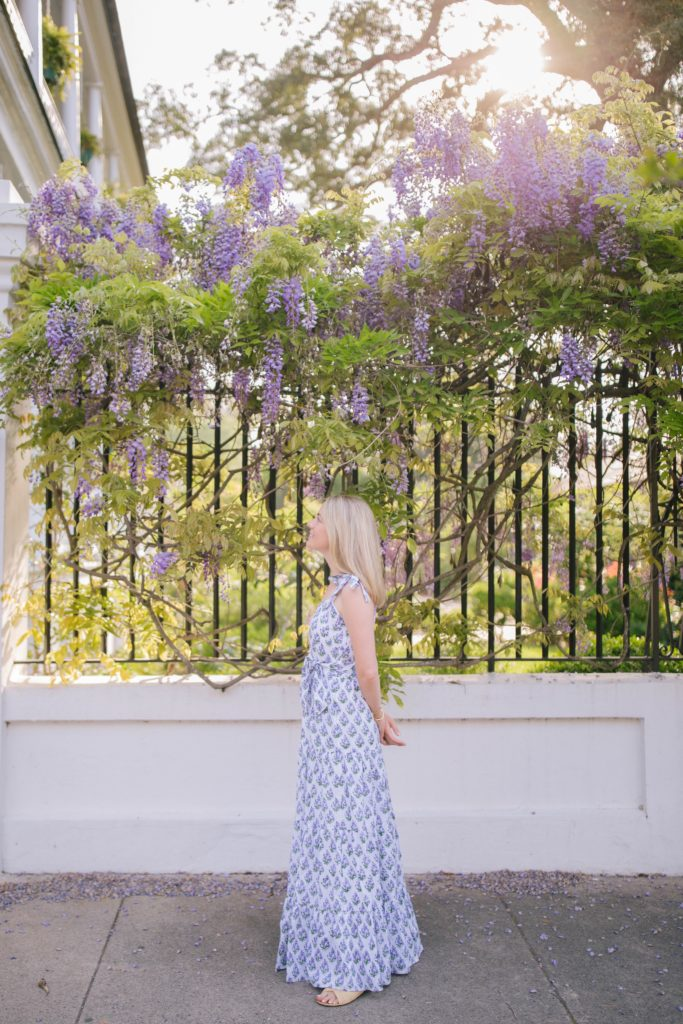The best blooming flowers to see in Charleston in the spring | Nature Inspired Spring Picks | Rhyme & Reason