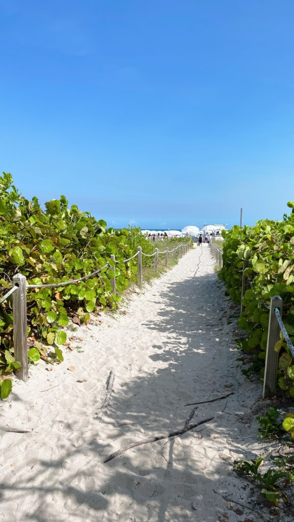 The best beachfront hotels in Miami | Rhyme & Reason